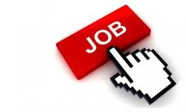 job-cyprus6