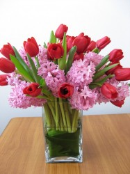 flori ADRA